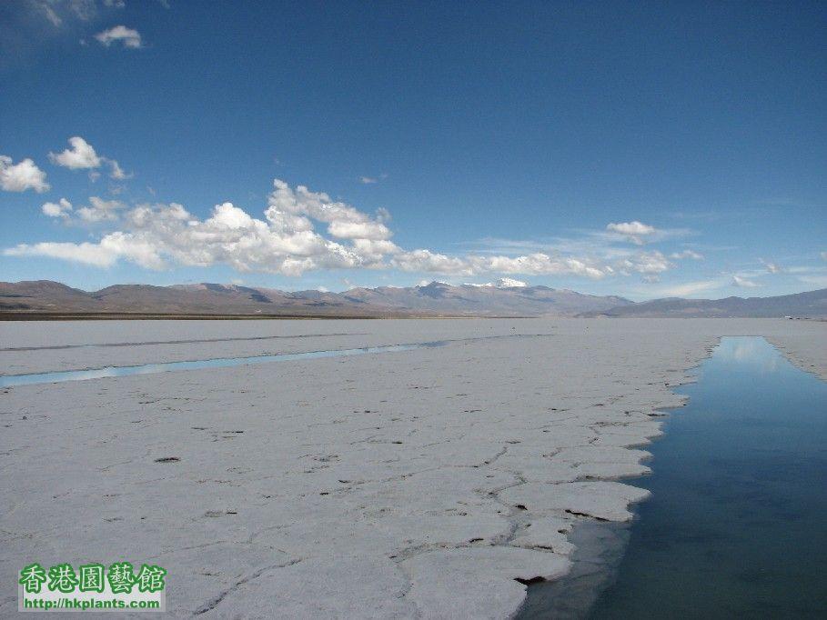 圖 37-胡胡伊省內的鹽湖.JPG