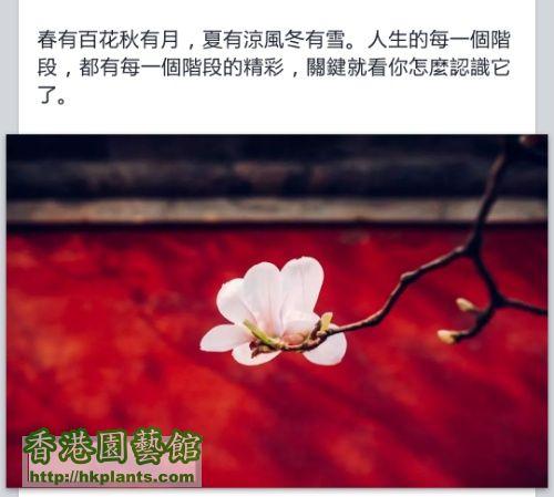 IMG_20140916_213842.jpg