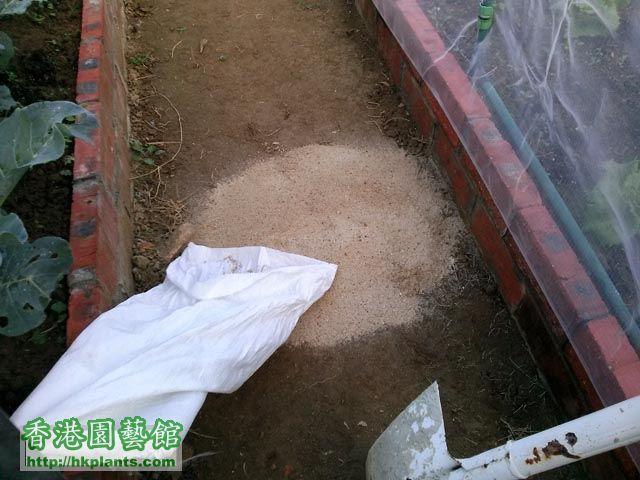 草布及防蟲網