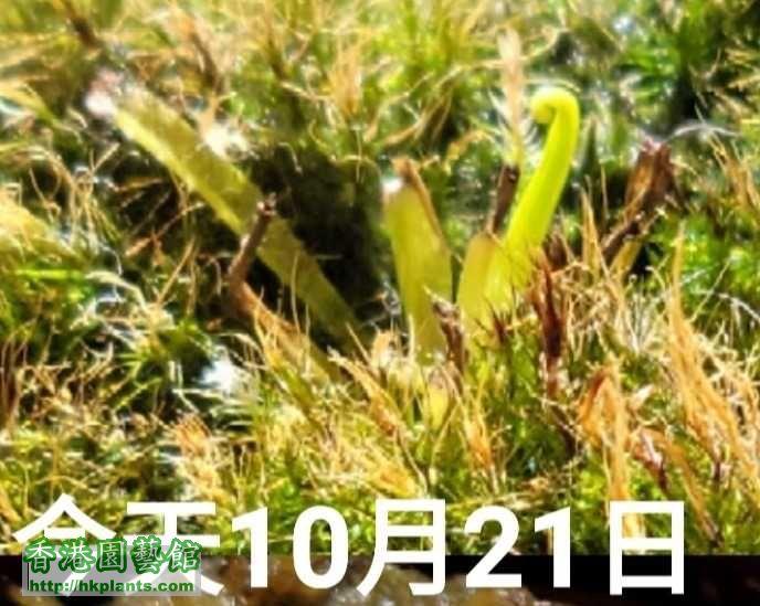 20201021_152114.jpg
