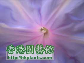 DSC01883a.jpg